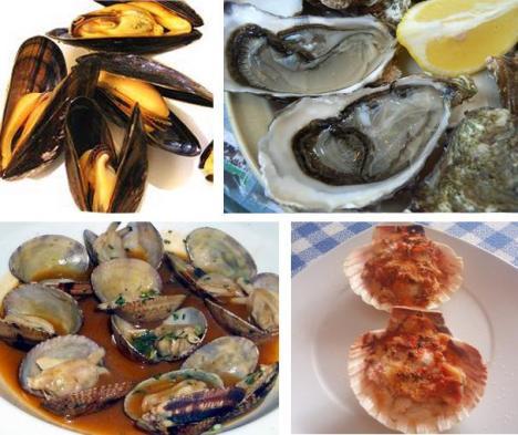 Bivalvos; mejillones, ostras, almejas y vieiras.